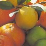 Польза лимона и других цитрусовых