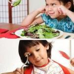 Сезонное питание