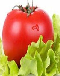 польза помидора для организма