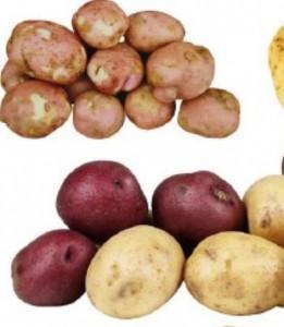 Картофель как народное средство