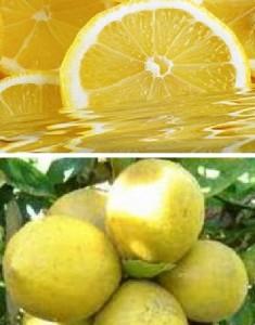 рецепты лечения лимонным соком