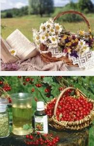 домашние рецепты здоровья