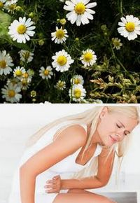 травы от болей в животе