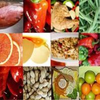 обмен веществ при похудении