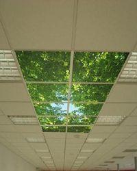 потолок типа армстронг