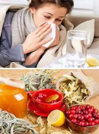 домашнее лечение гриппа