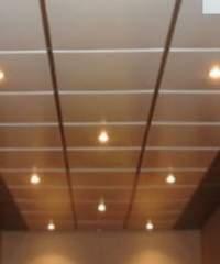 биогуард потолок