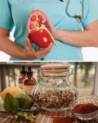 болезни почек, народные рецепты
