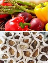 Правильное хранение растительных продуктов и посадочных семян