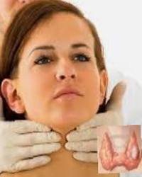 Щитовидная железа, лечение ее недугов