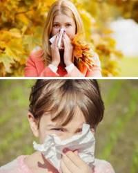 Питание при сезонной аллергии