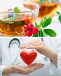 Сердечно-сосудистые заболевания, профилактика и лечение