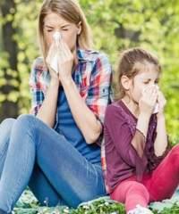 Поллиноз – аллергическое заболевание, методы лечения